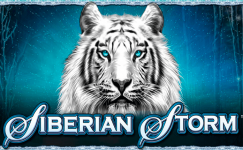 juegos tragamonedas gratis sin registrarse siberian storm en español