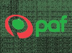 paf es casino online