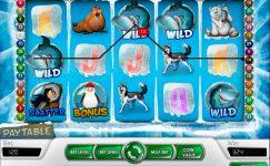 descargar juegos de casino gratis icy wonders
